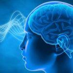 סוגים שונים של גלי מוח ויתרונותיהם