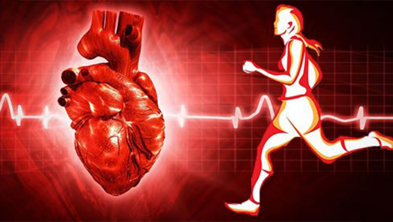 איך הריצה מועילה לבריאות הלב?