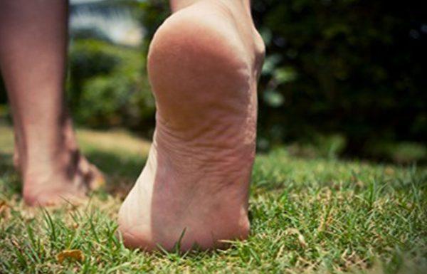 איך הליכה ברגליים יחפות משפיעה על הקשר בין המוח לגוף