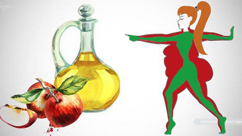 האם חומץ תפוחים יכול באמת להמיס שומן בטן?