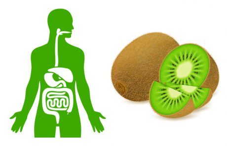 17 יתרונות מוכחים של אכילת קיווי