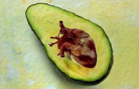 אלו המזונות שמגנים מפני התקף לב