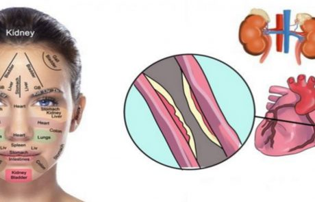 בעזרת הנקודות בפנים אפשר לדעת אם משהו לא בסדר עם הכבד הכליות ובכלל בגוף