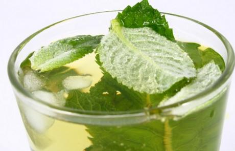17 סיבות טובות מדוע כדאי לשתות תה ירוק על בסיס יומי