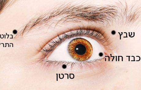 7 דברים שהעיניים אומרות על המצב הבריאותי שלכם