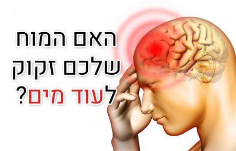 דברים אלה קורים למוח שלכם כאשר אתם לא שותים מספיק מים