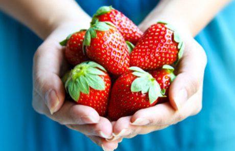 10 יתרונות בריאותיים ומתוקים לתותים