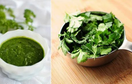 9 סיבות בריאותיות שיגרמו לכם לאכול יותר כוסברה!