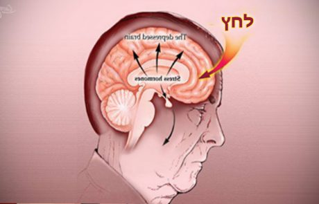איך לאמן את המוח להפסיק להיות בלחץ