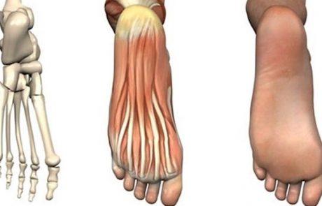 כך תוכלו להתגבר על עייפות וכאבים ברגליים בעזרת הטריקים האלה!
