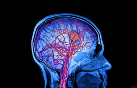 5 דרכים יעילות כדי לשפר את בריאות הנפש