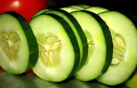 10 יתרונות בריאותיים למלפפון, מס' 4 ישכנע אתכם לאכול אחד כבר עכשיו!