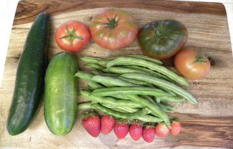 מזונות בריאים שאנחנו צורכים בדרך הלא נכונה